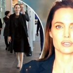 Angelina Jolie @ a Pet Store in ALL BLACK image