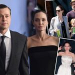 Angelina Jolie Hired Private Investigator to Uncover Brad Pitt's Affair With Marion Cotillard and Russian Hookers! image