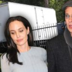 Angelina Jolie's Security Team Hide in the Grass With Binoculars After Kim Kardashian's Paris Attack! image