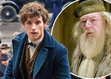 FANTASTIC BEASTS Director Confirms Dumbledore Appearance