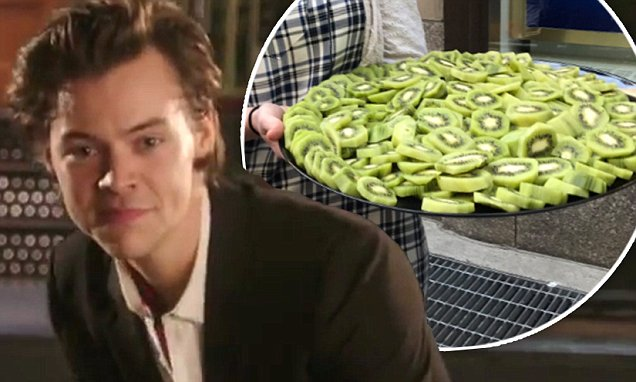Harry Styles Delivers Kiwi to Fans Waiting for SNL Performance