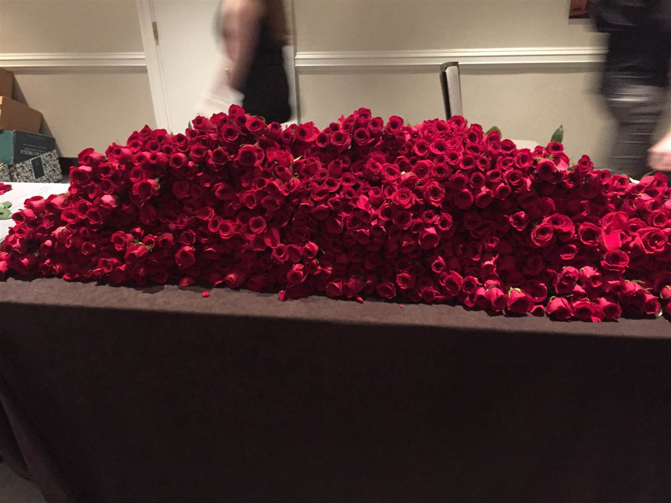 FLOWER POWER: Somebody Just Sent Hillary Clinton 1,000 Flowers! image