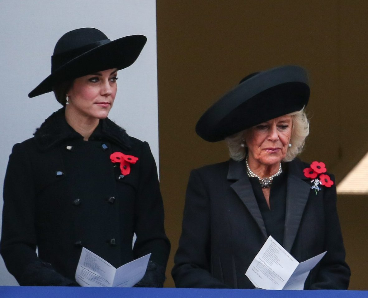 LOTS OF TEARS IN UGLY LONDON WEATHER: Kate Middleton and Prince William Attend Sunday Remembrance Services in London