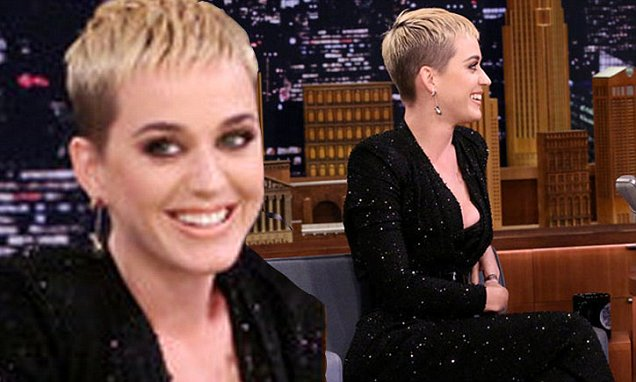 Katy Perry Says 'Swish Swish' is About Bullying! image