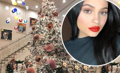 Pregnant Kylie Jenner Puts Pink Christmas Tree ON DISPLAY!