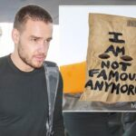 Liam Payne Releases New Single 'STRIP THAT DOWN' : Download and Stream Here image