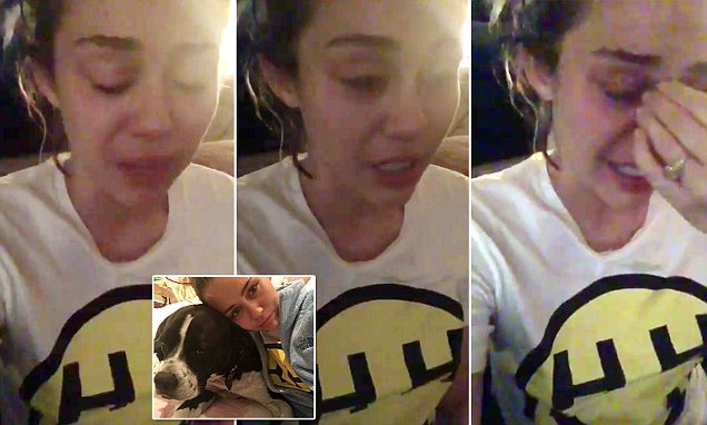 BREAKDOWN: Miley Cyrus Has a Complete Meltdown After Donald Trump Wins 2016 US Presidential Election image