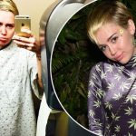 Miley Cyrus Plays Orange Thief & Marijuana Fairy in CRISIS In Six Scenes image