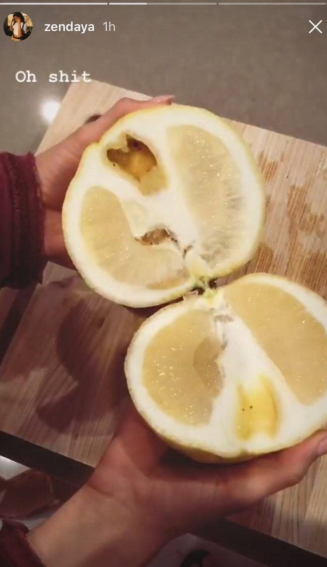 Zendaya Grows a GIANT LEMON In Her Backyard! image